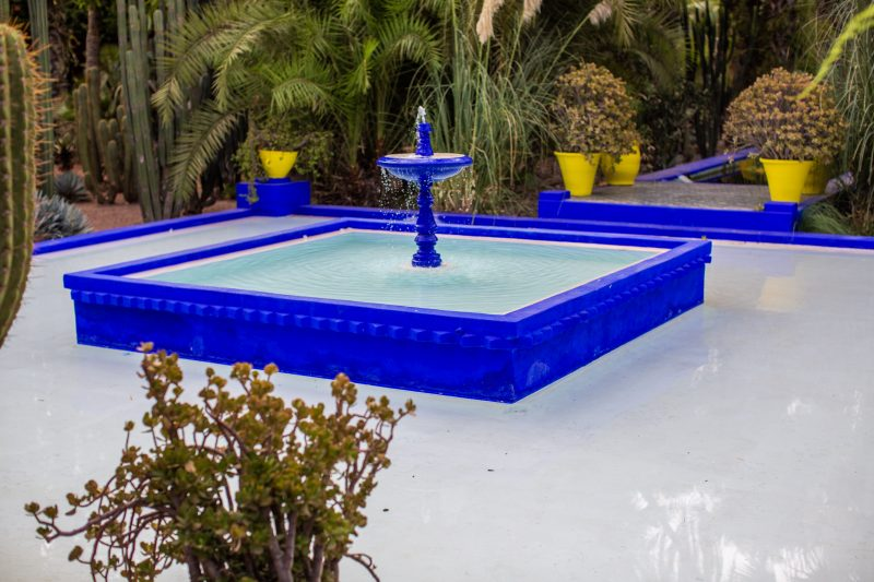 https://cochastyle.com/grace-fashion-in-le-jardin-majorelle